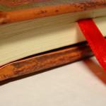 第六回 便利なchromeのアドオン(拡張機能)ブックマークの検索